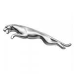 Jaguar logo for air conditioning